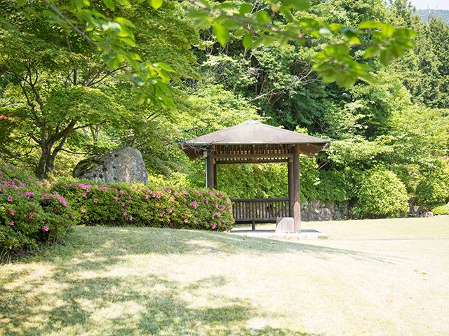 自然の村ギャラリー